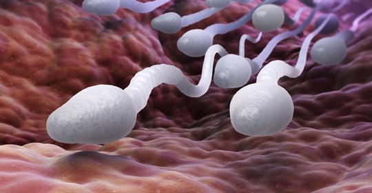 44%的美��人不愿意接�N新冠疫苗,原因竟然是��心精子�|量下降?