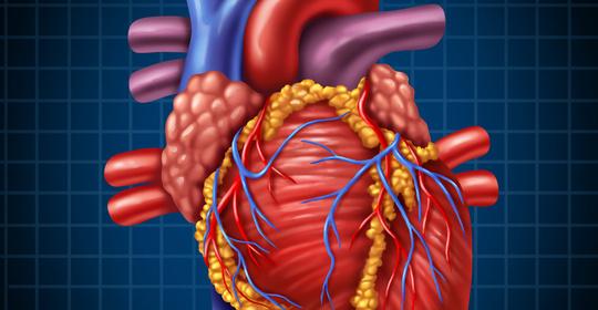 这种血管病比心梗脑梗还凶险,一旦发生该怎么自救?