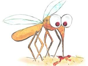 吃甜食喝啤酒最招蚊子,那些年关于蚊子的谣言