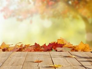 如何预防秋季常见病?