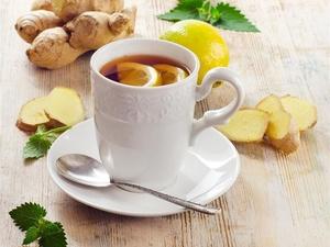 夏季喝什么茶减肥?减肥茶我们推荐这几种