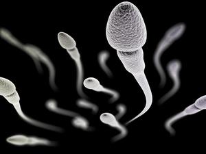 深入解析抽烟对精子的影响