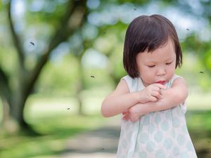 夏季蚊虫肆虐,家长要学会这几个驱蚊小妙招