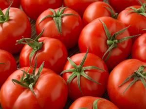 超有效西红柿减肥法 减肥美容两不误