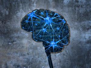 """大脑也有""""亚健康"""",你中招了吗?"""