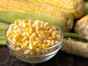 袁隆平谈论转基因,研究证实:转基因食品对人体无害,可以放心吃