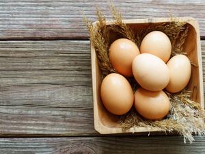 每天早上吃鸡蛋,会增加心血管死亡率?北大40万人研究给出答案