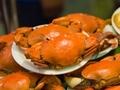 螃蟹蒸多久最适宜 蒸螃蟹有哪些注意事项