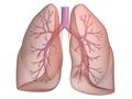 浙江发现5例武汉来浙并出现发热等呼吸道症状患者