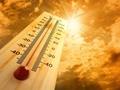 """四分之一户外劳动者平均每月中暑一次 王老吉为广州户外劳动者送""""清凉"""""""