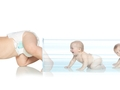 深入解读试管婴儿技术在过去25年的显著变化