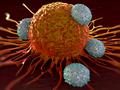 国产PD-1免疫疗法或将催生癌症治疗领域千亿级市场