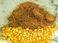 坚持用玉米须泡水,有很好的利尿和降血糖效果,谁用谁知道
