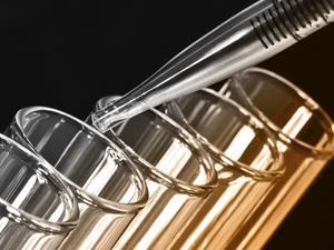 特殊蛋白成心脏病治疗新帮手