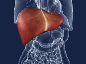 肝硬化还能治好吗 如何预防这种疾病
