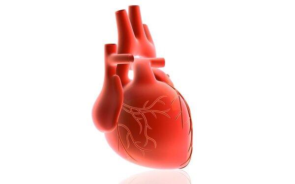 经导管二尖瓣修复术对改善心衰的