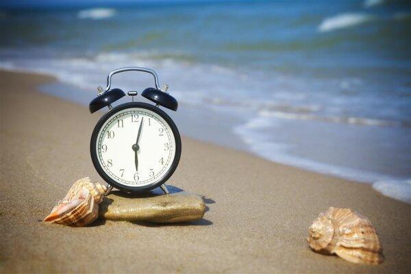 食用海参益处多!海参进补时间你知道吗?
