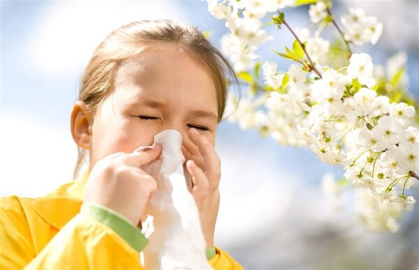 踏青赏花正当时 花粉过敏需当心
