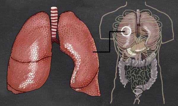 """各位家长请注意,电子烟正在""""吃掉""""孩子的肺!"""