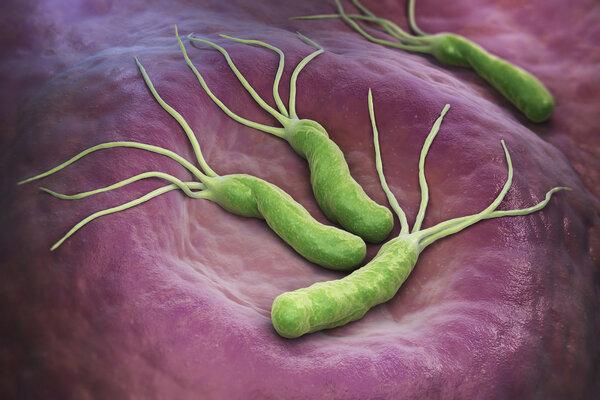 Gastroenterology:�敢�E用抗生素��?幽�T螺�U菌都�_始耐�啦!