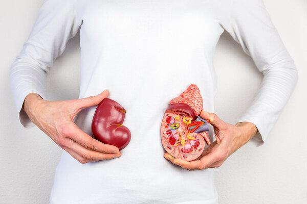五个习惯很伤肾,许多人却经常犯!健康养肾法了解一下