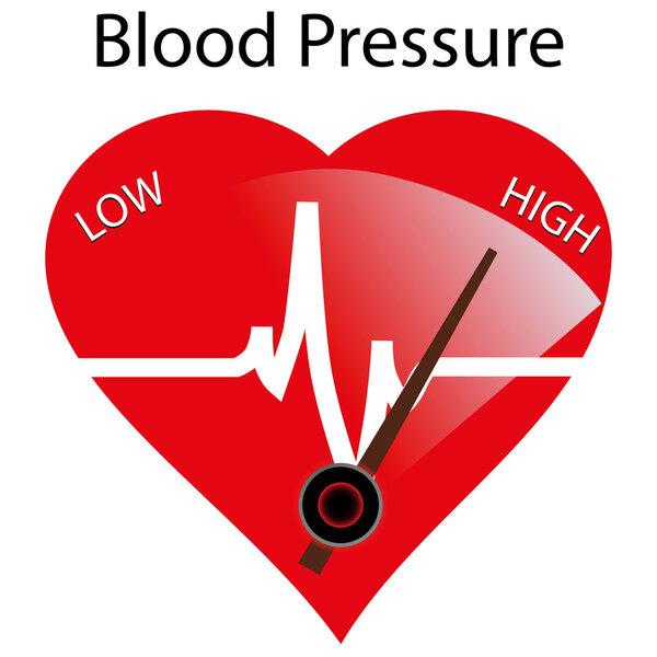 心脑血管用药 中医药膳治疗高血压