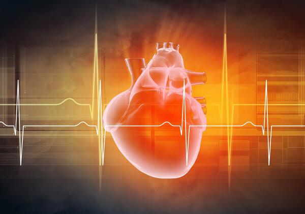 保持这5个小习惯,强健心脏也很简单!