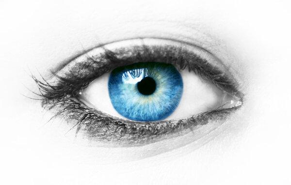 Stem Cell Rep:人源干细胞揭示青光眼的发病机制