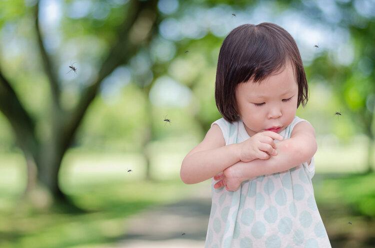 清明节带孩子祭祖扫墓,要注意防蚊虫