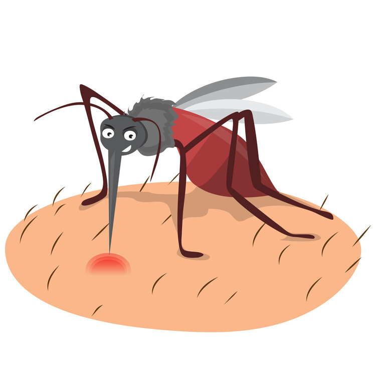蚊子包总不消,是缺锌吗?坦白说,原因主要在它