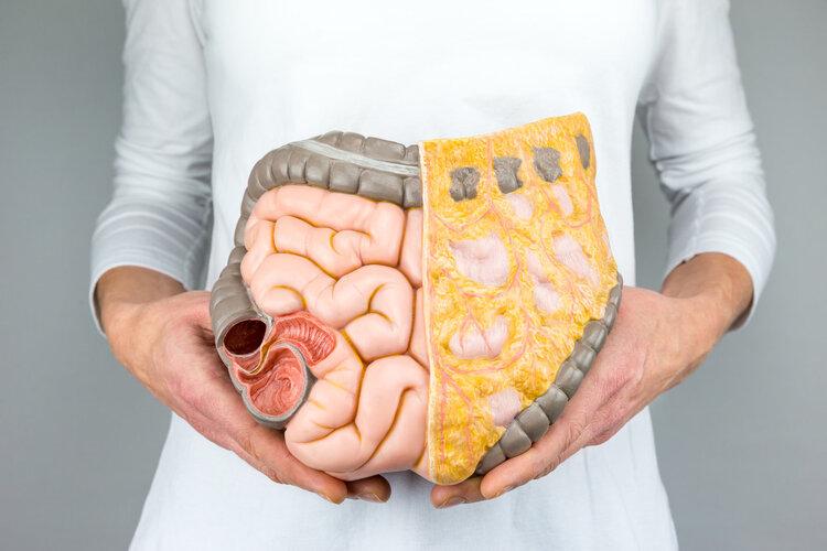 养护肠道健康,有5件事可以做,别发现得太晚