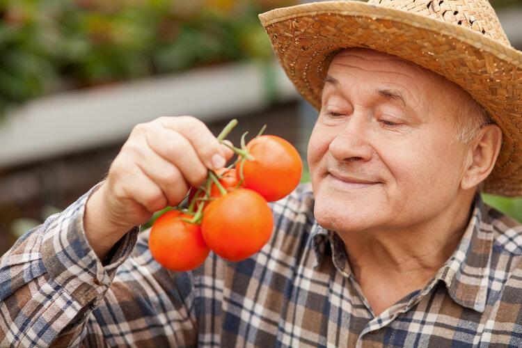 美容养颜的蕃茄,要注意这3点,才能发挥其功效